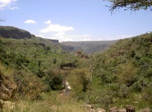 Bild Kenia