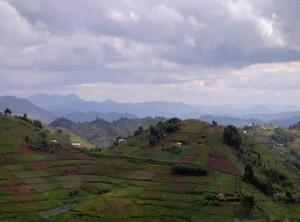 Bild Uganda